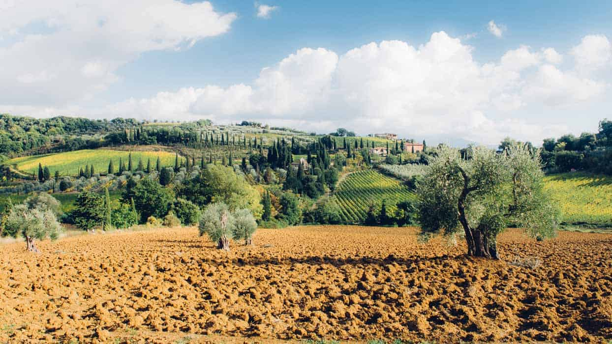 TMy trip in Tuscany: incredible view from Sant'Antimo| Very EATalian